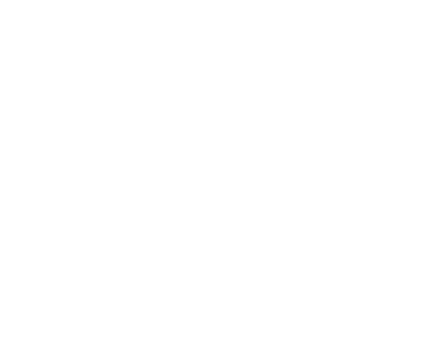 logo drone blanc